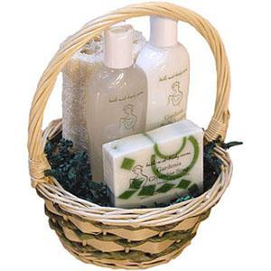 Basics Basket